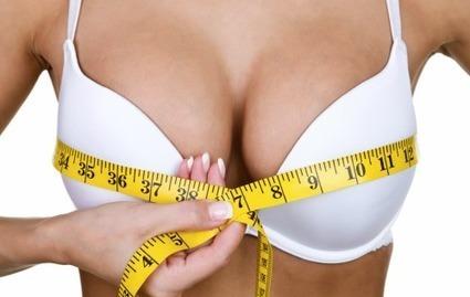 Bust size - ราคา - ราคาเท่าไร
