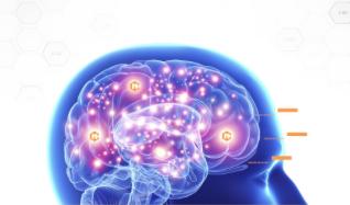 Neurocyclin – รีวิว – pantip – พันทิป