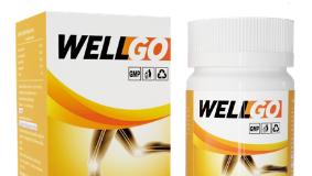 WellGo - คือ - pantip - ราคา - ขายที่ไหน - ดีไหม - รีวิว